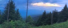 6200ex Clingmans Dome sunset (jjjj56cp) Tags: mountain mountains ridges smokies gsm greatsmokymountains gsmnp greatsmokymountainsnationalpark nationalpark nc northcarolina clingmansdome hiking trailside summer july iphone jennypansing pano panoramic