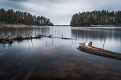 Low water II (mabuli90) Tags: finland lake water forest tree sky clouds longexposure branch wood blue summer landscape nature