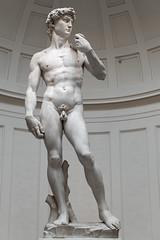 David (Robert Wash) Tags: italia italy florence firenze tuscany toscana galleriadellaccademia david michelangelo art sculpture renaissance