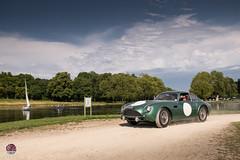 Aston Martin DB4 GTZ (GPE-AUTO) Tags: chantilly artsetelégance art elégance concours grass garden sunset sun sol soleil jardin chateau castle castillo race car racecar legacy aston martin bd4 gtz astonmartindb4 db4gtz zagato