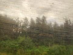 Dirty window!