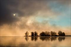 Sunrise and Fog Petrie Island_1342-19 (Daniel Cadieux) Tags: sunrise fog foggy mist misty trees petrieisland ottawa ottawariver sun