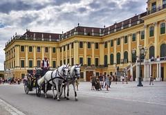 Vienna Wien (Oliver Kuehne) Tags: vienna wien austria sonyrx100m2 april 2019 schlossschönbrunn street horses fiaker