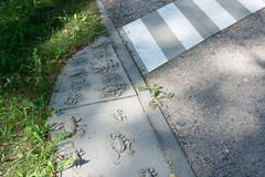 DSC_5419_Edit (Clive Webber) Tags: latvia places saulkrasti