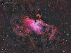 Messier 16 HaRGB (https://celfoscastrofotografia.blogspot.com/) Tags: astrofotografia astronomy messier m16 meade astronomía ed80 halpha lxd75 skywatcher astrophotografy cieloprofundo qhyccd nebulosadelaguila qhy163m qhy163 astrometrydotnet:id=nova3623428 astrometrydotnet:status=solved messier16