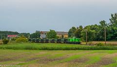 SM42-2333 (Jakub Łukaszewski) Tags: sm42 sm422333 ltc logistictransportcompany zrkdom towarowy stefanowo wielkopolskie lato d29359 stonka diesellok diesellocomotive poland trainspotting train summer