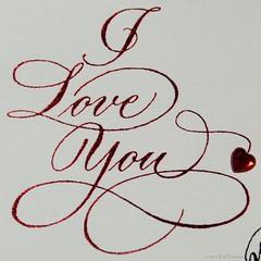 Love You! (GoodLifeErik) Tags: loveyou macromondays printedword greetingcard macro outdoor sunlight metallic print red heart cursive iloveyou