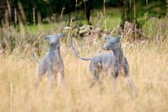 Longdog / Chris Moss / Sculpture at Marks Hall 2019 (mattbeee) Tags: sculpture sculptureatmarkshall essex exhibition art markshall coggeshall 23