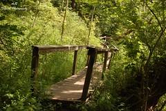 The Trail Less Traveled (AvR Digital Photography) Tags: trail path bridge twist turn wood linear park penfield newyork explore hike irondequoit creek footbridge