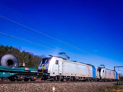 LINΞΛS 186 450 & 186 447 met staalrollentrein @ Testelt (Avinash Chotkan) Tags: 186447 186450 coils traction xpedys bombardier belgium cargo lineas br186 railpool traxx