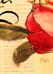 Printed Word (Marco Mondays) 08-12-19 (MelenaMe) Tags: macromondays printedword letter letters word words rose leaf leaves