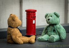 Quite Simple Really (HTBT) (13skies) Tags: mailbox letter two 2 2bears conversing explain mailing postage greenbear teddybeartuesday brown brownbear fun learning helping communication htbt happyteddybeartuesday