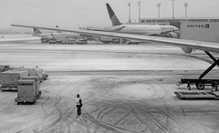 Checking out her Aircraft - Laguardia Airport, NYC (TravelsWithDan) Tags: pilot tarmac woman snow candid laguardia airport city urban nyc newyork snowing airplanes wing baggagecarts bw monochrome blackandwhite canong9x unlimitedphotos