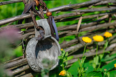 Summer day (donnicky) Tags: bright closeup countryside dacha daylight dof fence flowers goodweather hanging householdequipment landscape madeofwood nature nopeople outdoor publicsec rural selectivefocus summer wood d850