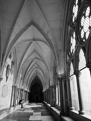 Westminster Abbey (Steve only) Tags: olympus pen ep5 panasonic lumix g vario 14714 asph 7144 714mm f4 m43 bw monochrome 黑白 snap landscape westminster abbey england london