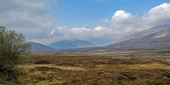 Moor and Mountains (San Francisco Gal) Tags: westerross scotland scottishhighlands moor mountain tree sky cloud