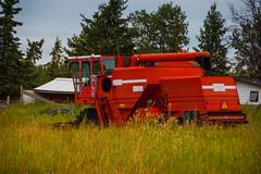 Old Combine (Bracus Triticum) Tags: old combine アルバータ州 alberta canada カナダ 8月 八月 葉月 hachigatsu hazuki leafmonth 2019 reiwa summer august