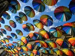 parapluies-brive (19wolfy) Tags: street ambiance atmospheres colors couleurs fuji x20 umbrella parapluie sky blue ciel