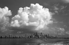 Gathering Clouds  (Astrum FN-64) (Harald Philipp) Tags: hc110 rollei35se astrum fn64 blackandwhite bw florida miami 35mm 135 monochrome film analog