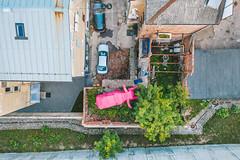 Pink Elephant | Kaunas aerial #223/365