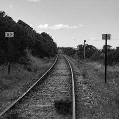 Abandoned Railway Line (Anthony Kernich Photo) Tags: railway rail train railwayline victor victorharbor adelaide australia sa southaustralia square transport abandoned blackandwhite grayscale monochrome mono squarecrop blackwhite bw vanishingpoint decay olympusem10 olympus olympusomd microfourthirds outdoor country