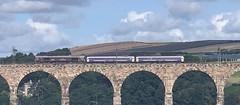 GB Railfreight 66746 (13/08/2019) (CYule Buses) Tags: caledoniansleeper gbrailfreight 66746 eastcoastmainline royalborderbridge class66