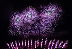 Fireworks in Nagaoka (3) (takashi muramatsu) Tags: fireworks nagaoka japan nikon d810 長岡花火