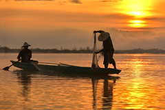 Vietnamese fishermen River (VietNamBeautiful) Tags: fish net boat outdoor burma asian thailand river travel province myanmar lake people one asia wave wood catching sunset throw silhouette job single inle man food fishing sport tropical cloud sunrise red pitch morning fishermen cast kayak tradition sky wooden water nature environment sillouette fisherman landscape
