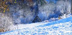 Le Peyras (Vallée de Campan, Hautes-Pyrénées, Fr) - Cabane éclairée par l'hiver10609 (caminanteK) Tags: peyras valléedecampan hautespyrénées occitanie france hiver soleildhiver neige