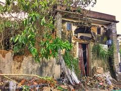Abandoned house, Tai Po, Hong Kong