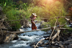 Mother and baby walk across a small bamboo bridge with running water. (VietNamBeautiful) Tags: child mother happy young lifestyle leisure family baby playing parent toddler park boy son person summer cute fun outdoor love life care kid childhood outside together activity active woman walk run mom across beautiful nature forest sitting river walking green female girl portrait healthy yellow water concept travel one