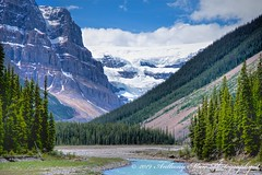 Columbia Icefield Jasper National Park (anthonymaw) Tags: anthonymaw canada climatechange geology glacier icefall jasper mountain mountains river rockymountains signed
