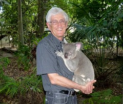 Cuddly Koala Bear, Lone Pine Koala Sanctuary, Brisbane Australia (Joseph Hollick) Tags: lonepinekoalasanctuary brisbane australia animal koalabear cuddly koala