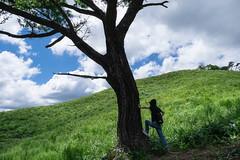 20190813Xt3_6230 (Gansan00) Tags: fujifilm xt3 xf18135 fujifilmxseries japan hiroshima ブラリ旅 聖湖 深入山 snaps hijiriko landscape summer 8月 green akiota