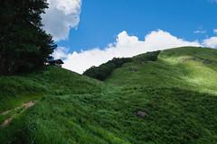 20190813XT3_6240 (Gansan00) Tags: fujifilm xt3 xf18135 fujifilmxseries japan hiroshima ブラリ旅 聖湖 深入山 snaps hijiriko landscape summer 8月 green akiota
