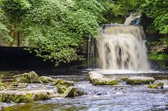 YORKSHIRE DALES (Steven Godwin) Tags: waterfalls water yorkshire dales landscape countryside cotterforce westburton nature