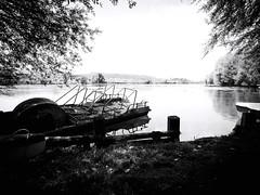 GFX1670 - Posta Fibreno Lake (Diego Rosato) Tags: lake lago posta fibreno acqua water natura nature albero tree pedalò fuji gfx50r fujinon gf23mm rawtherapee bianconero blackwhite