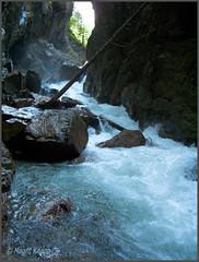 Leutaschklamm (magritknapp) Tags: leutaschklamm germanyaustria felsen wasser treibgut baum rocks water flotsam roches eau