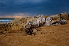 la chose the thing (laurent.triboulois) Tags: mer sea clouds beach wood ciel plage etrange chose thing island nuage île