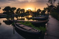 Small boats (modesrodriguez) Tags: albufera atardecer barcas barcos catarroja landscape paisaje puerto sunset valencia travel spain boats wood pantalan
