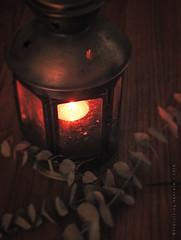 Vintage Light (Ephraim Fowler) Tags: ephraim fowler lamp vintage fire old photography leaf stilllife wood rustic