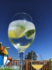 Summer (vinergodt) Tags: drink gin gt summer odsherred bøsserup