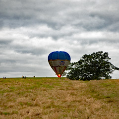 landing bbf 16 8828 (m.c.g.owen) Tags: bristol international balloon fiesta 2016 ashton court ballooning hot air balloons flight landing flying august 14th england uk great britain gboek