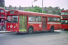 SMS232 - EGN 232J (Solenteer) Tags: londontransport sms232 egn232j aec swift parkroyal goldersgreen