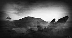Eternal (Loegan Magic) Tags: secondlife landscape rocks hills ireland water sky tree vintage blackandwhite