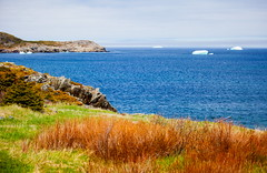 There Be Bergs Afloat (stevenbulman44) Tags: color newfoundland iceberg canon 70200f28l filter tripod gitzo polarizer grass landscape ocean pacific blue sky rock outdoor holiday spring lseries