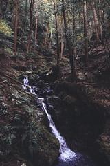 Cascade (stephanexposeinjapan) Tags: japon japan asia asie stephanexpose canon 600d 16 1635mm montagne mountain nature eau water