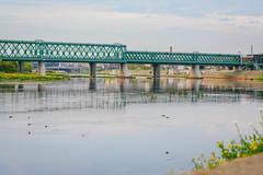 Bridge | Kaunas #224/365