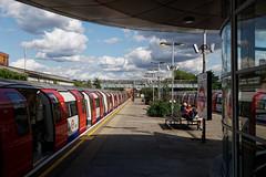 The Platform 225/365 2019