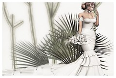 ► ﹌Wedding Fashion.﹌ ◄ (яσχααηє♛MISS V♛ FRANCE 2018) Tags: cw celestinaswedding envogue avatar artistic art roxaanefyanucci topmodel poses photographer posemaker photography lesclairsdelunedesecondlife lesclairsdelunederoxaane models modeling maitreya hairs hairstyle girl glamour glamourous fashion gown flickr france firestorm fashiontrend fashionable fashionindustry fashionista fashionstyle designers secondlife sl slfashionblogger shopping styling style hautecouture bridal wedding virtual blog blogger blogging bloggers bento